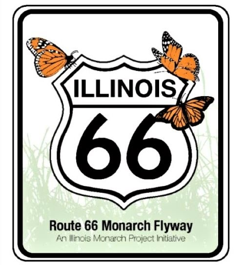Route 66 Monarch Flyway in Illinois aims to help butterflies