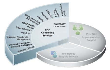 SAP Consulting Services by Routeget Technologies