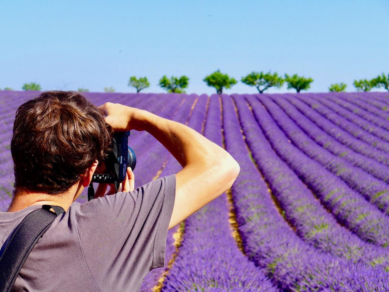 Photographe dans la Lavande