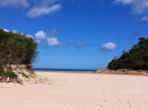 Tidal River and the beach
