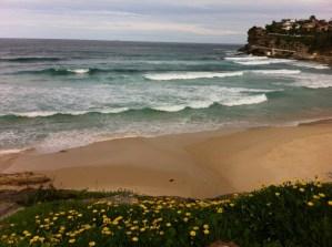Bronte Beach, walking the Bondi to Coogee coastal walk
