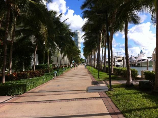 Miami Beach bike path, the Marina