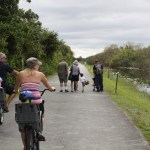 Bike tour in Shark Valley, the Everglades