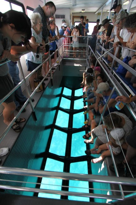 Glass-bottom boat, John Pennekamp Coral Reef State Park