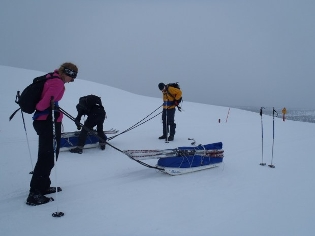 Skiing with a pulkka in Kiilopää