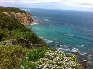 Touring the Great Ocean Road, Australia