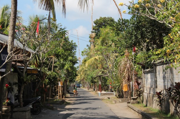 Drive in Central Bali: through jungles and villages