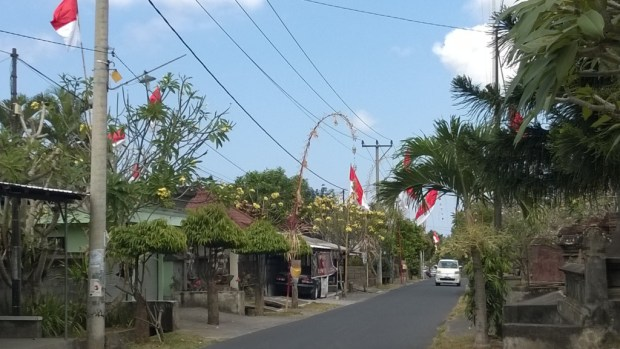 Village on the day trip to Central Bali