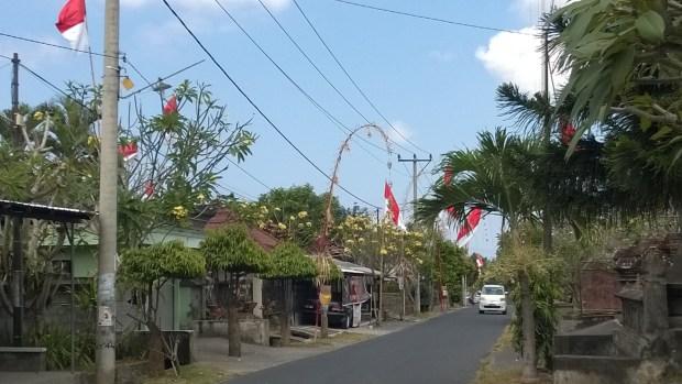 Drive in Central Bali
