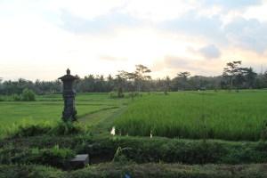Rice god temple