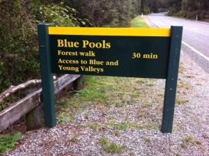 Blue Pools forest walk sign