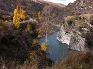 Kawarau Gorge from the Mining Centre