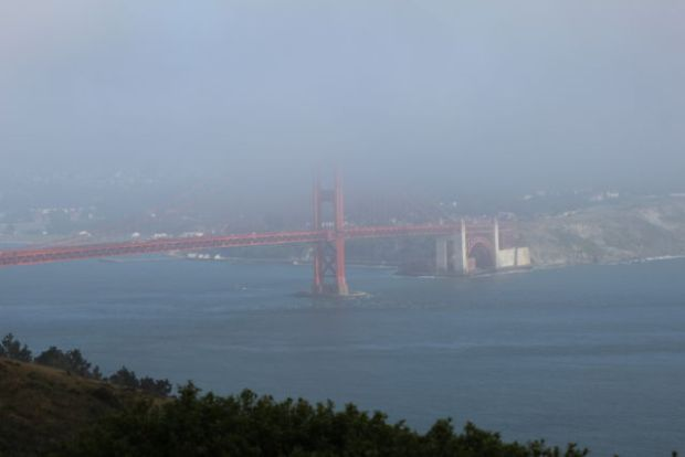 Golden Gate from Hawks Hill