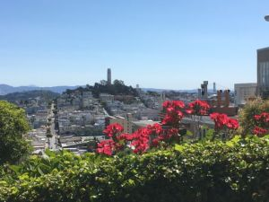 View from Lombard Street San Francisco