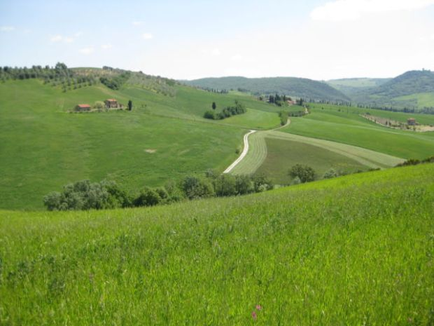 Agriturismo holiday in Tuscany the hills