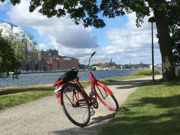 Stockholm nature tour by bike
