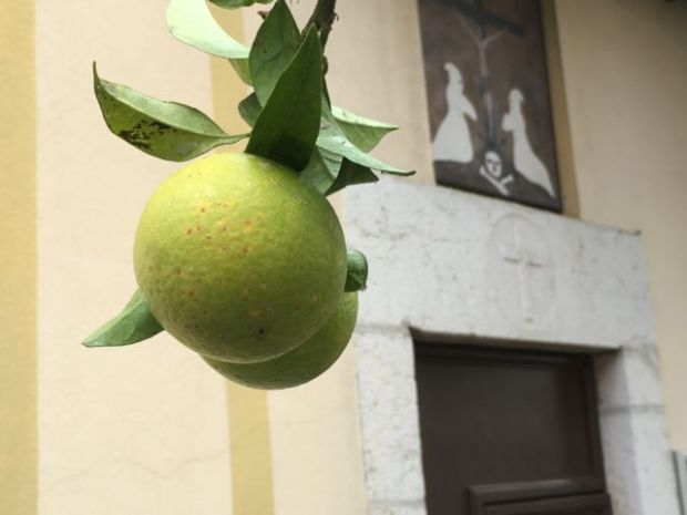 A Menton lemon, French Riviera