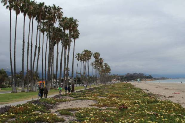 Santa Barbara beach walk