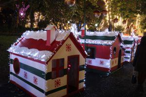 Funchal Christmas houses