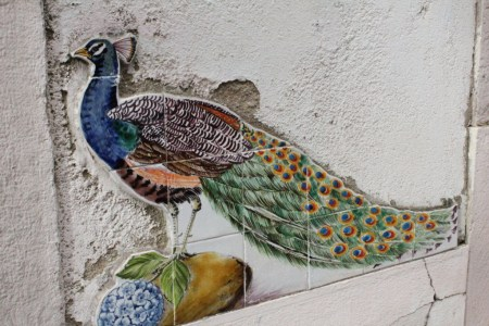 Lisbon Alfama peacock azulejo