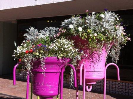 New Regent Street flowers