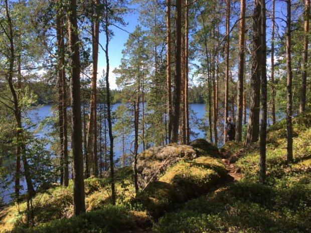 Three Mountains trail at Enonranta, Southern Konnevesi National Park