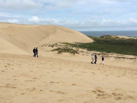 Rubjerg Knude sand dune and hikers