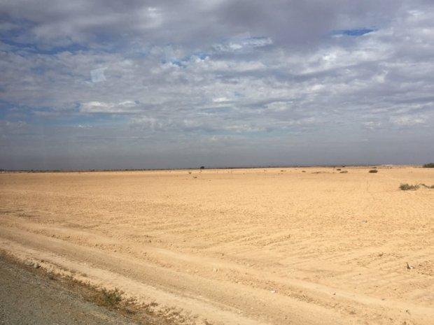 Desert landscape, Marrakech to Essaouira