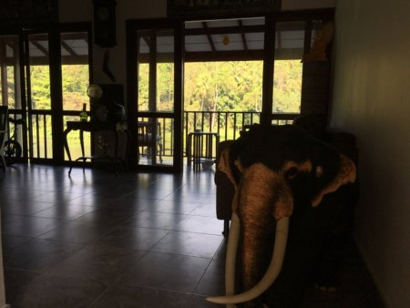 Chaminrich homestay living-room
