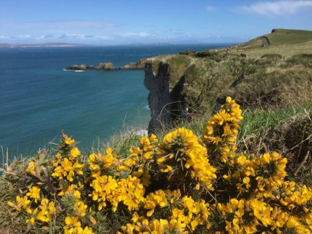 Walk to Carrick-a-Rede rope bridge