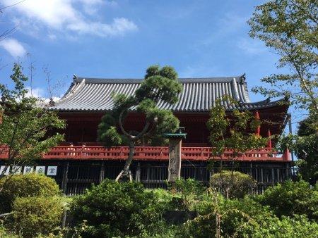Kiyomizu Hall and Ueno Park gardens