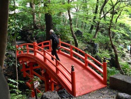 Koishikawa Korakuen Garden bridge