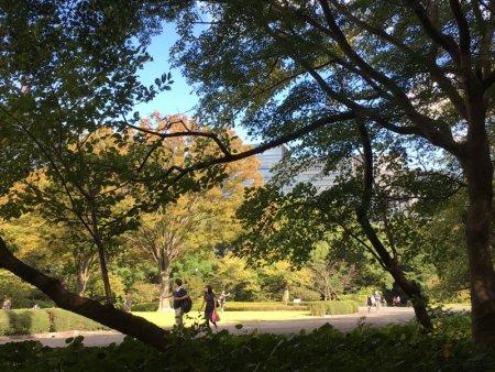 Visiting Imperial Palace Gardens, Tokyo