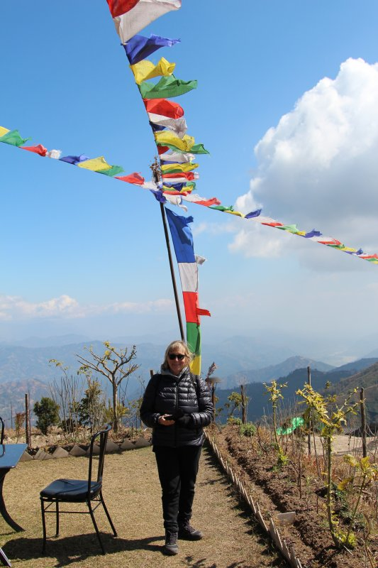 Nepalese prayer flags at 2000 m