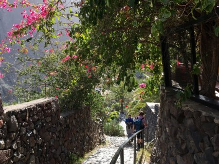 Hiking to Masca village, Tenerife