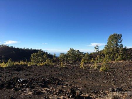 Parque Nacional del Teide landscape