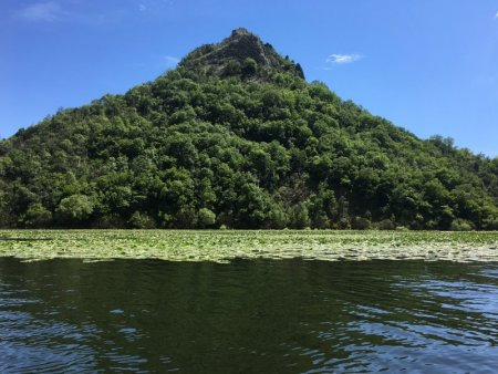 Skadar Lake river bend seen from boat cruise