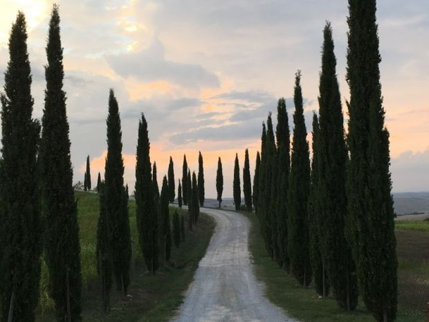 Italy by train and car: a road in Tuscany