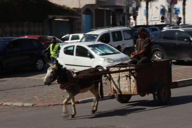 Old and new transport in Morocco