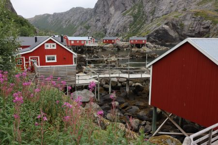 Nusfjord fishing huts, Lofoten