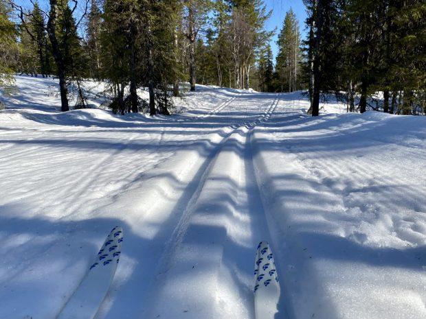 Arctic Lapland spring: skiing on ski tracks