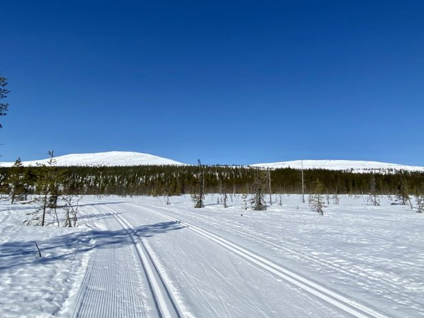 Arctic Lapland spring: well-prepared ski tracks of Ylläs