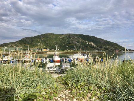 Hillesøytoppen from Sommarøy Camping