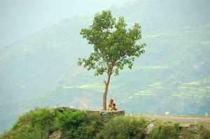 Situé dans le nord de l'inde, le Garhwal est bordé par le Tibet
