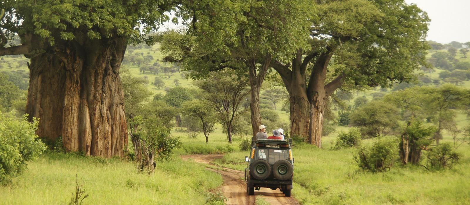 img-diapo-entete - Tanzanie-1600x700-10.jpg