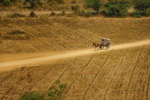 img-diapo-tab - Myanmar-1600x900-31.jpg