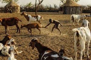 img-diapo-tab - Namibie-1600x900-24.jpg