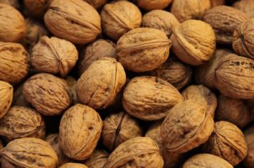 Walnuts help the gut microbiome