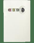 Извещатель охранный пассивный звуковой контроля разрушения остекленных конструкций GBD-PLUS2