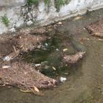 Roggia Fusia piena di rifiuti a Caporovato - aprile 2016
